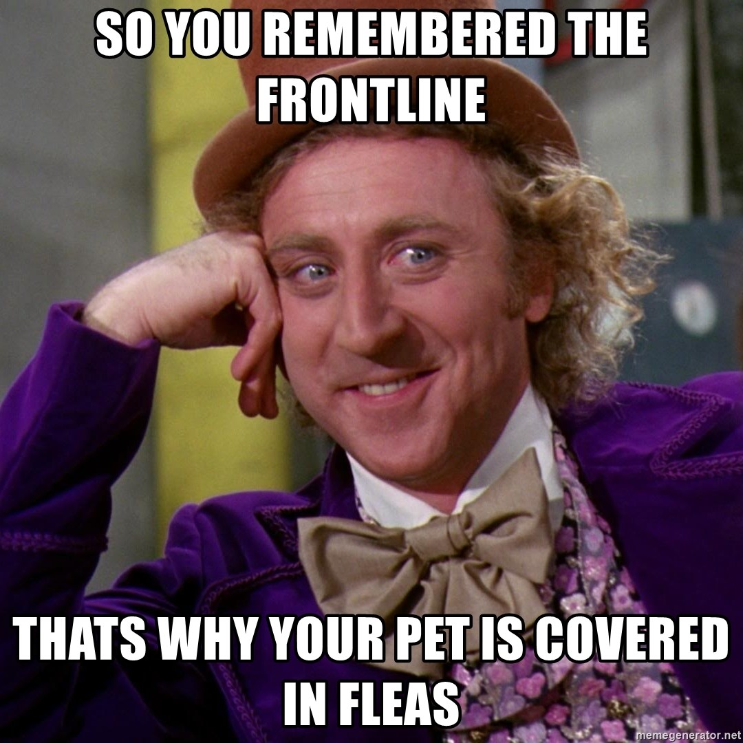 Willy Wonka - So you remembered the frontline thats why your pet is covered in fleas