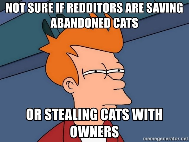 Futurama Fry - Not sure if redditors are saving abandoned cats or stealing cats with owners