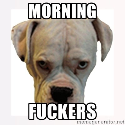stahp guise - morning fuckers