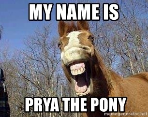 Horse - My Name is  prya the Pony