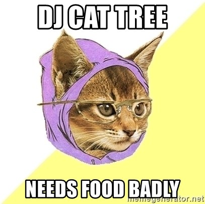 Hipster Kitty - DJ Cat tree needs food badly