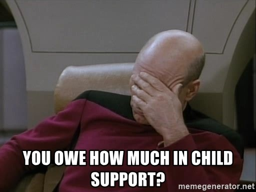 Picardfacepalm -  You owe how much in child support?