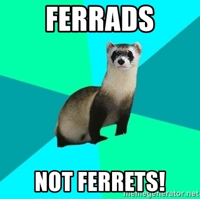 Obvious Question Ferret - Ferrads Not Ferrets!