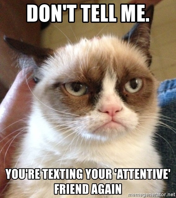 Grumpy Cat 2 - Don't tell me. You're texting Your 'attentive' friend again