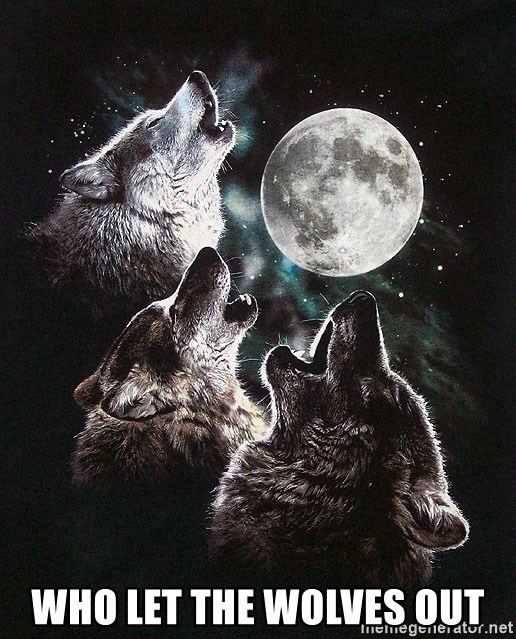 Lone Wolf Pack -  Who Let The Wolves Out