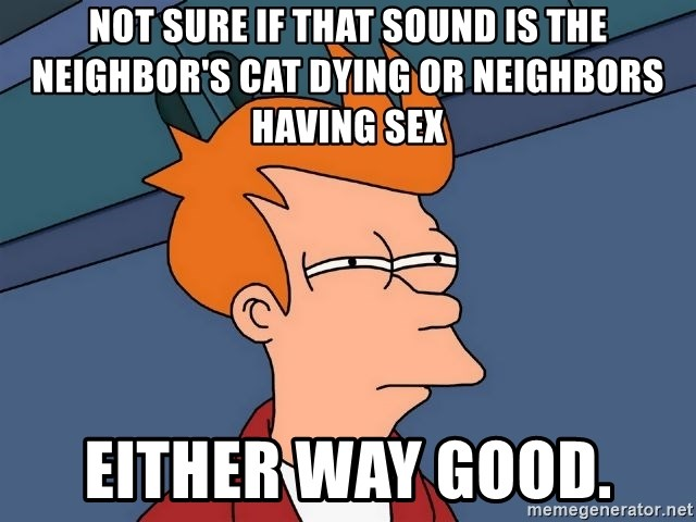 Futurama Fry - not sure if that sound is the neighbor's cat dying or neighbors having sex either way good.