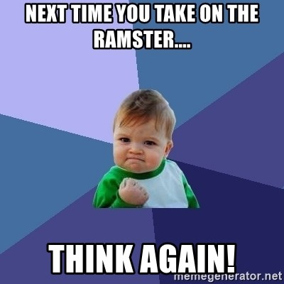 Success Kid - NEXT TIME YOU TAKE ON THE RAMSTER.... THINK AGAIN!