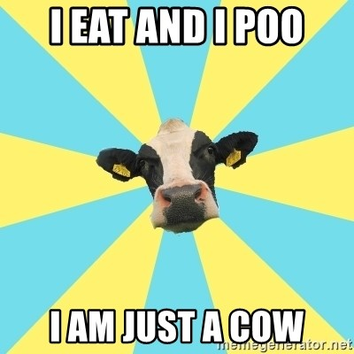 Comparatist Cow  - i eat and i poo i am just a cow
