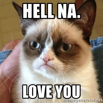 Grumpy Cat  - Hell Na. Love you