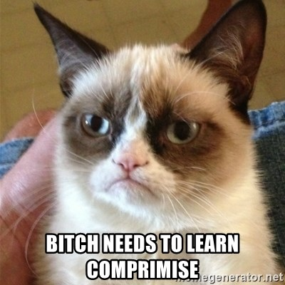 Grumpy Cat  -  bitch needs to learn comprimise