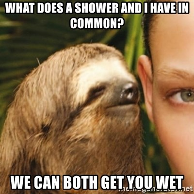 Whispering sloth - What Does a shower and I have in common? We can both get you weT