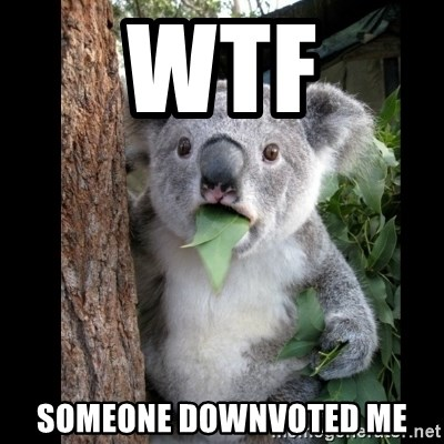 Koala can't believe it - wtf someone downvoted me