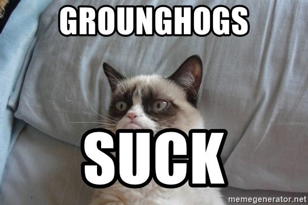 Grumpy cat good - grounghogs suck