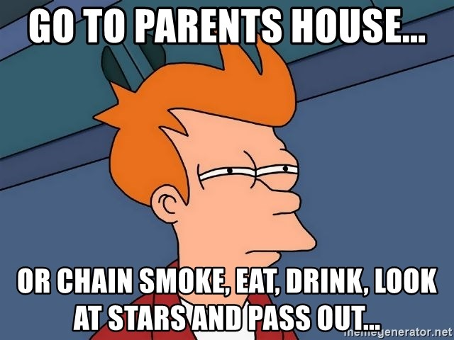 Futurama Fry - go to parents house... or chain smoke, eat, drink, look at stars and pass out...