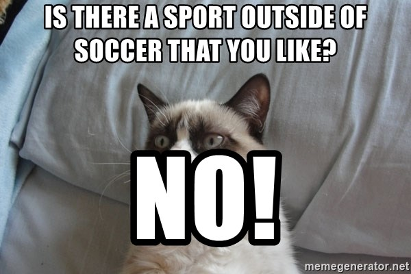 Grumpy cat 5 - Is there a sport outside of soccer that you like? NO!