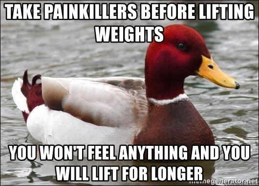 Malicious advice mallard - take painkillers before lifting weights you won't feel anything and you will lift for longer