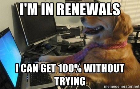 I have no idea what I'm doing - Dog with Tie - I'm in renewals I can get 100% without trying