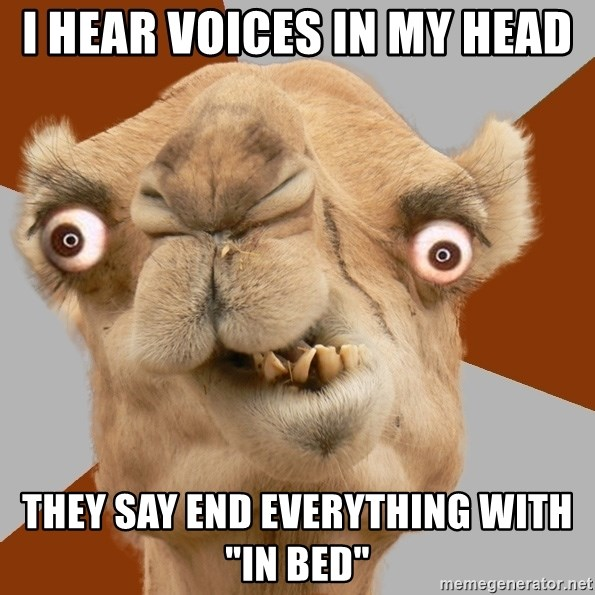 "Crazy Camel lol - I hear voices in my head They say end everything with ""in bed"""