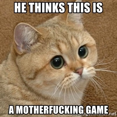 motherfucking game cat - he thinks this is a motherfucking game