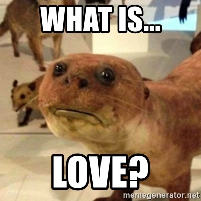 Sad Otter - what is... Love?
