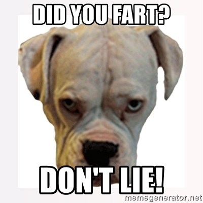 stahp guise - did you fart? DON'T LIE!
