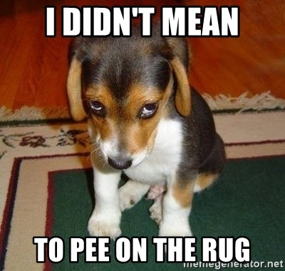 Sad Puppy - i didn't mean to pee on the rug