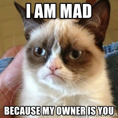 Grumpy Cat  - I AM MAD BECAUSE MY OWNER IS YOU