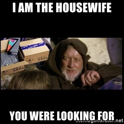 JEDI MINDTRICK - I am the housewife You were looking for