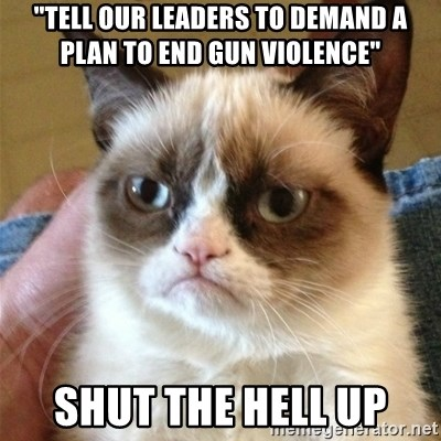 "Grumpy Cat  - ""tell our leaders to demand a plan to end gun violence"" SHUT THE HELL UP"