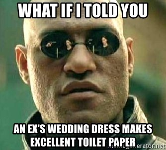 What if I told you / Matrix Morpheus - WHAT IF I TOLD YOU An ex's wedding dress makes excellent toilet paper