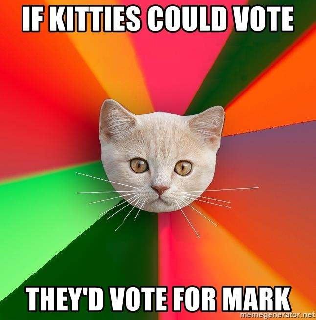 Advice Cat - if kitties could vote they'd vote for mark