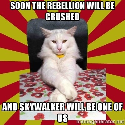 Dictator Cat - soon the rebellion will be crushed and skywalker will be one of us