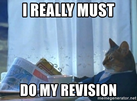 I Really Must Do My Revision Sophisticated Cat Meme Generator