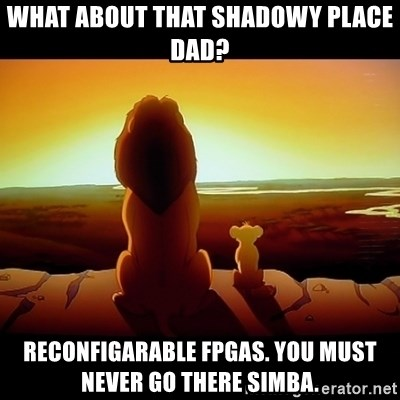 Simba - What about that shadowy place dad? reconfigarable fpgas. You must never go there Simba.