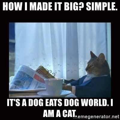 i should buy a boat cat - how i made it big? simple. it's a dog eats dog world. i am a cat.