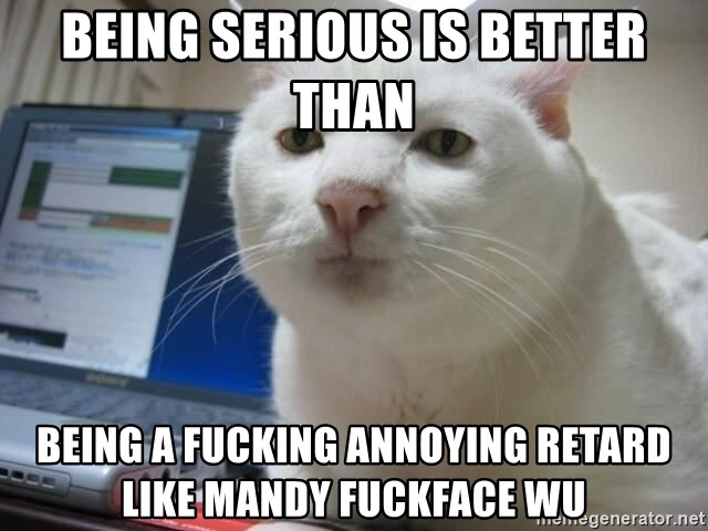 Serious Cat - being serious is better than being a fucking annoying retard like Mandy fuckface Wu