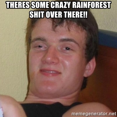 Really highguy - Theres some craZy rainforEst shit over there!!
