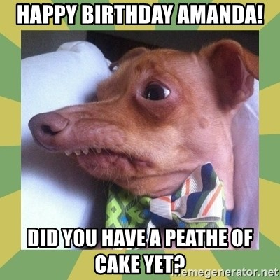 Thquirrel - Happy Birthday Amanda! Did you have a peathe of cake yet?