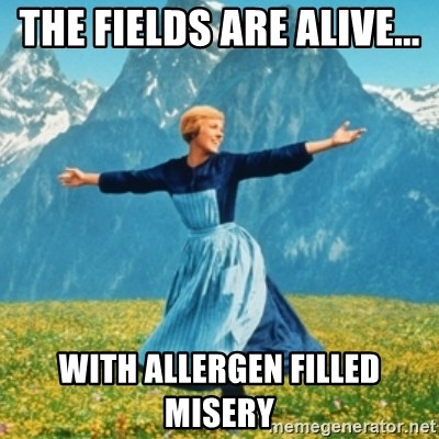 Sound Of Music Lady - The fields are alive...  With allergen filled misery