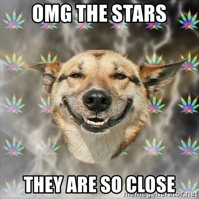 Stoner Dog - omg the stars they are so close