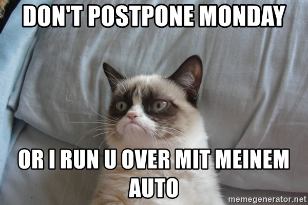 Grumpy cat good - don't postpone monday or i run u over MIT meinem auto