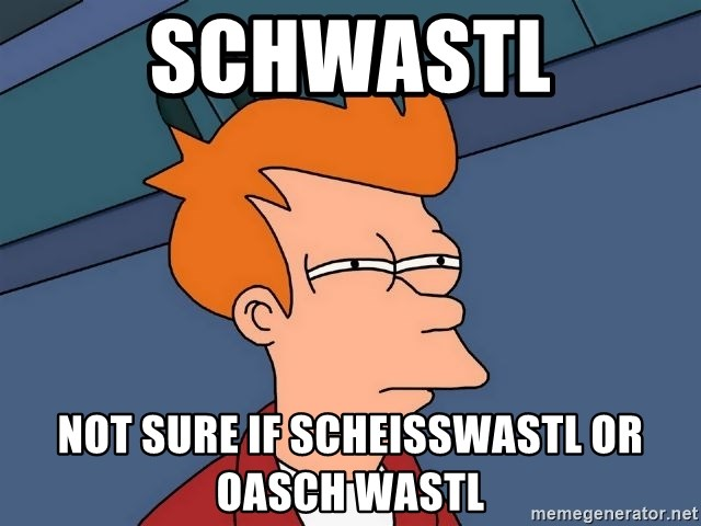 Futurama Fry - SCHWASTL NOT SURE IF SCHEISSWASTL OR OASCH WASTL