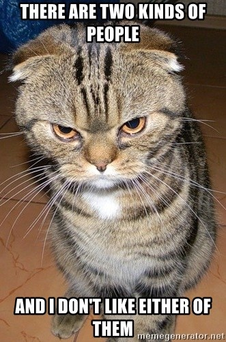 angry cat 2 - THERE ARE TWO KINDS OF PEOPLE  AND I DON'T LIKE EITHER OF THEM