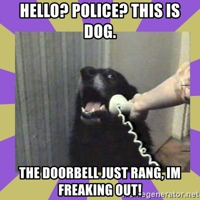 Yes, this is dog! - hello? Police? This is dog. The doorbell just rang, im freaking out!
