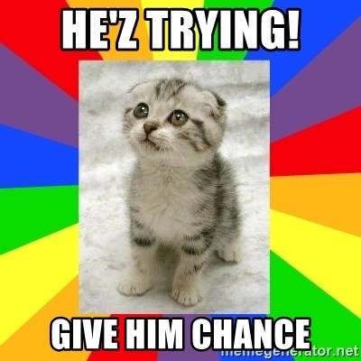 Cute Kitten - he'z trying! give him chance