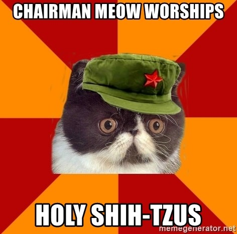 Communist Cat - Chairman Meow worships holy shih-tzus