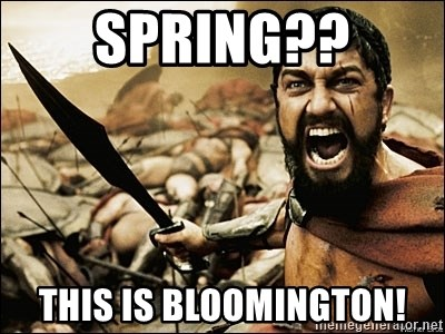 This Is Sparta Meme - spring?? this is bloomington!