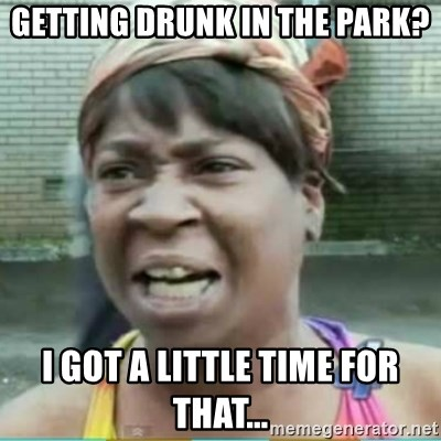 Sweet Brown Meme - getting drunk in the park? i got a little time for that...
