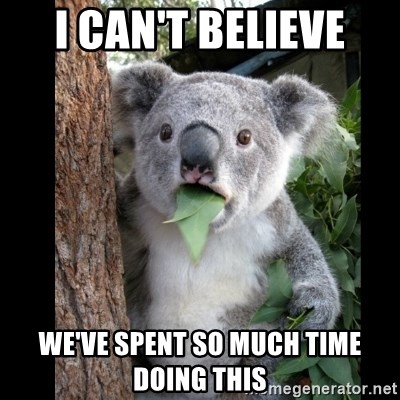 Koala can't believe it - I can't believe we've spent so much time doing this