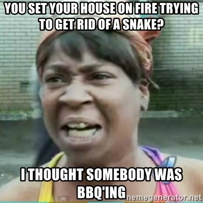Sweet Brown Meme - You set your house on fire trying to get rid of a snake? i THOUGHT SOMEBODY WAS bbq'ing